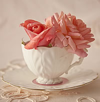 Flower in Cup and Saucer
