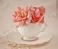 Vintage China Posy Tea Cups